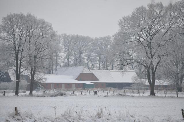 0610-02 Brokeloher Moorhof Winteransicht