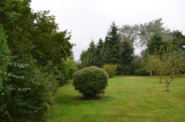 0624-03 Villa SeeHunde Garten
