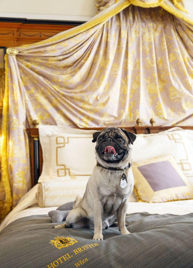0637-13 Hotel Bristol Inge Prader 05