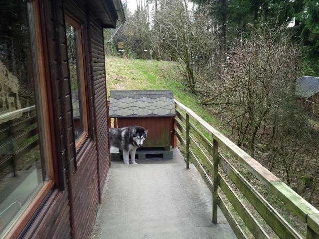 0676-02-kleine-huette-im-wald-erzgebirge-balkon