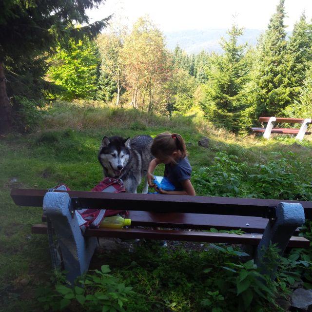 0677-05-Ferienhaus-Balto-Wandern-mit-Vierbeinern