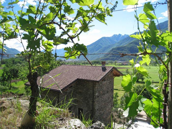 0628-04 Borgo Erbiola Ciclamino Aussenansicht 4