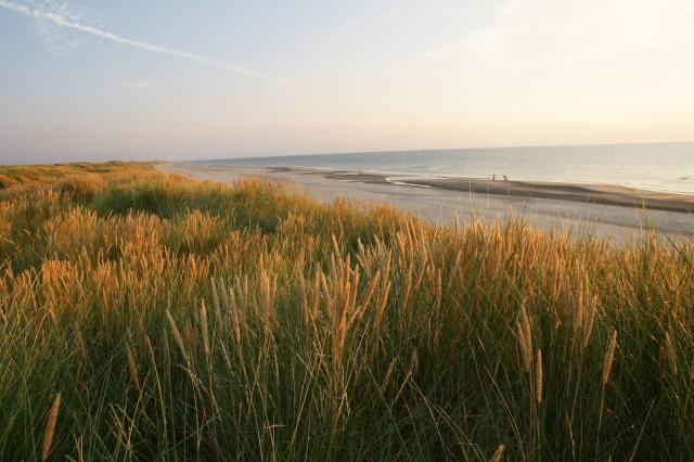 Ferienhaus Westwind Blick aufs Meer