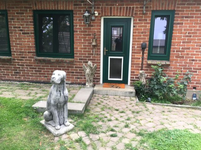 0766-01 Holiday Dogs Aussenansicht