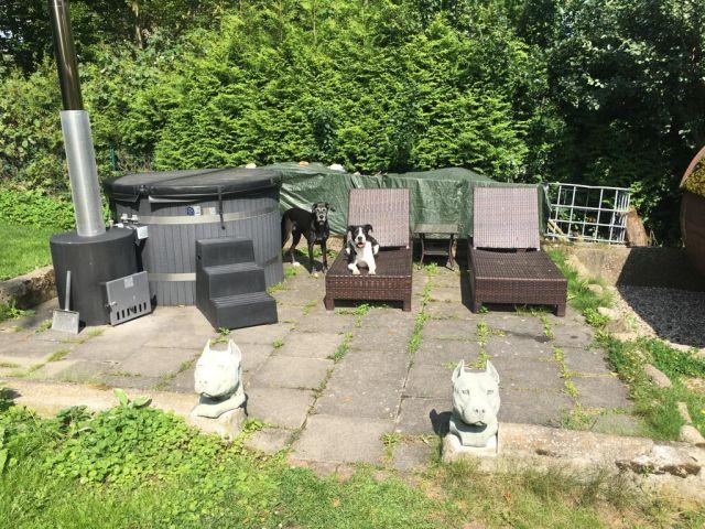 0766-05 Holiday Dogs Garten Bild 4