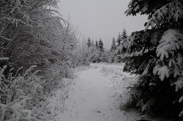 0785-18 Villa Familienglueck Winterwandern