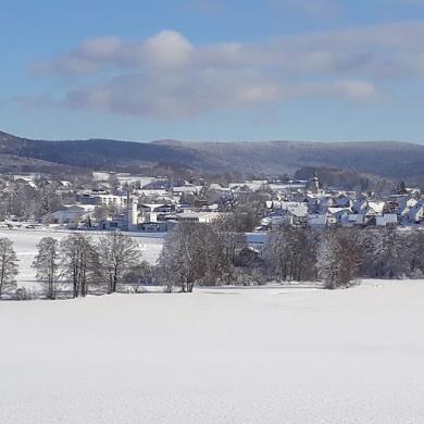 0870-16 Winter in Waldmuenchen