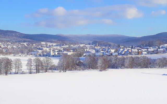 0870-17 Waldmuenchen im Winter