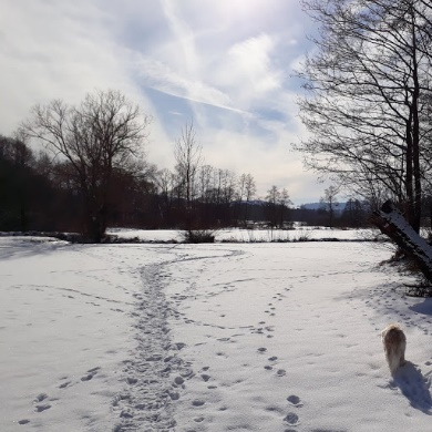 0870-17 Winterspaziergang.kpg