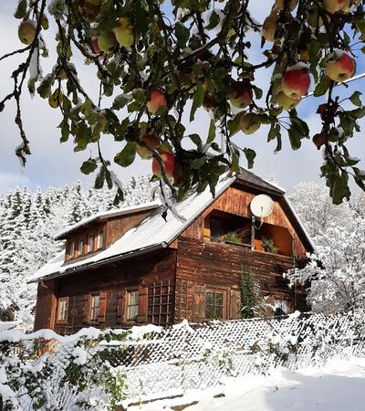 0871-02 FeWo Harmonie Haus Winter