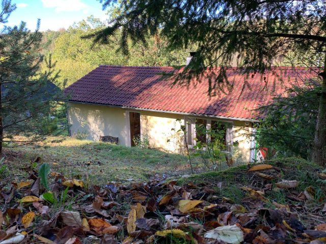 0867-06 Kleines Jagdhaus Garten 2