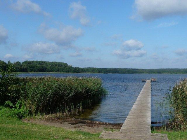 0912-04 Strochennest der See