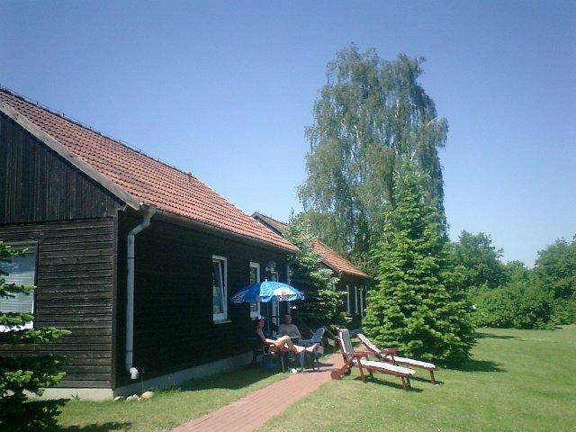 0912-15 Strochennest Haus Stern