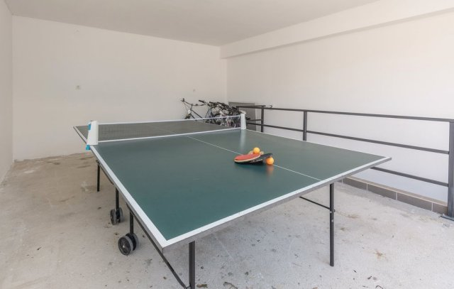 0913-19 FeHa Zupan Tischtennis